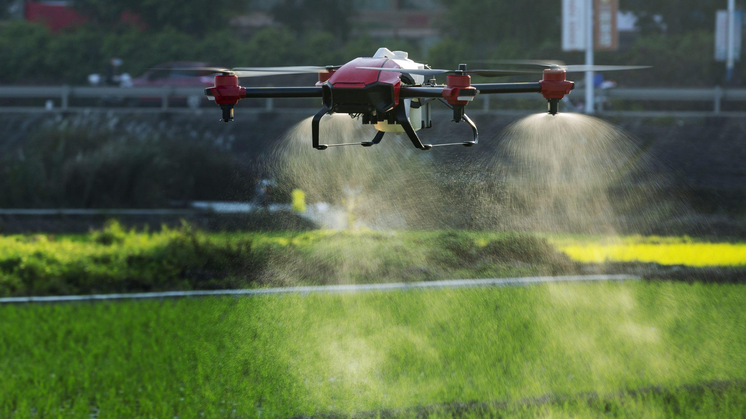 Penggunaan drone yang marak digunakan pertanian di China (Gambar : Pexel)