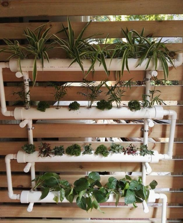 Menanam sayur dan tanaman hias dengan hidroponik NFT