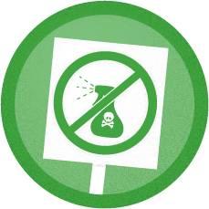 (Contoh inovasi pertanian ramah lingkungan : tidak menggunakan pestisida / Gambar : epl.org.ua)