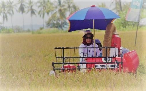 (Salah satu Alsintan / Gambar : http://pphtp.tanamanpangan.pertanian.go.id)