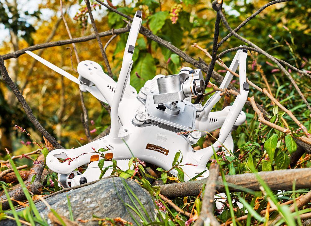 (Drone tersangkut di pohon dapat menimbulkan kerusakan / Gambar : PopularMechanics)