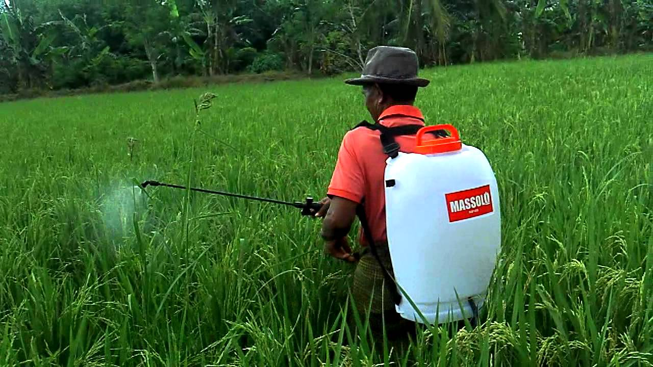 (Knapsack sprayer / Gambar : sumberplastik.co.id)