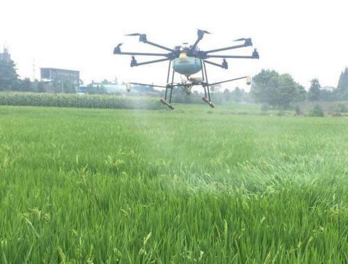 Penyemprotan pestisida dengan drone | gambar: dronefromchina.com