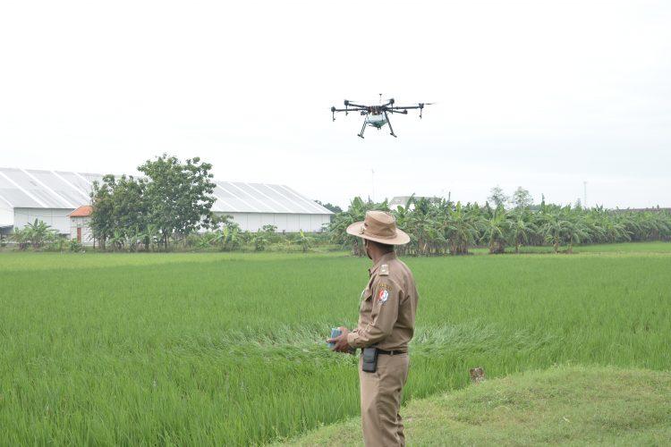 kegiatan drone pertanian